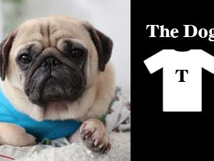Whimsical Wednesday: The Dog T shirt